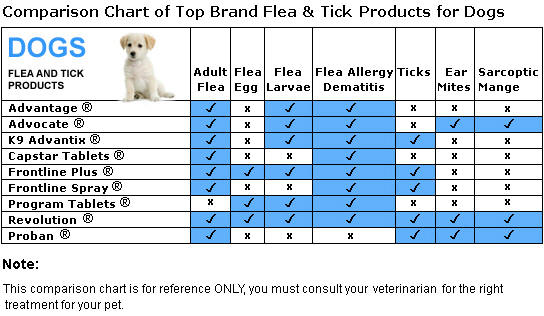 Flea And Tick Meds For Dogs And Cats
